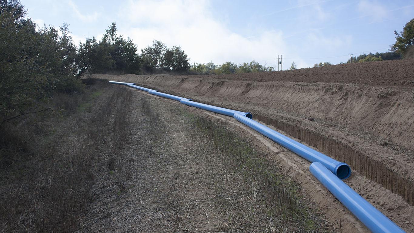 Biosca tubos 2
